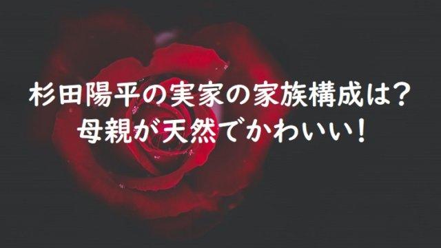 sugitayouhei8