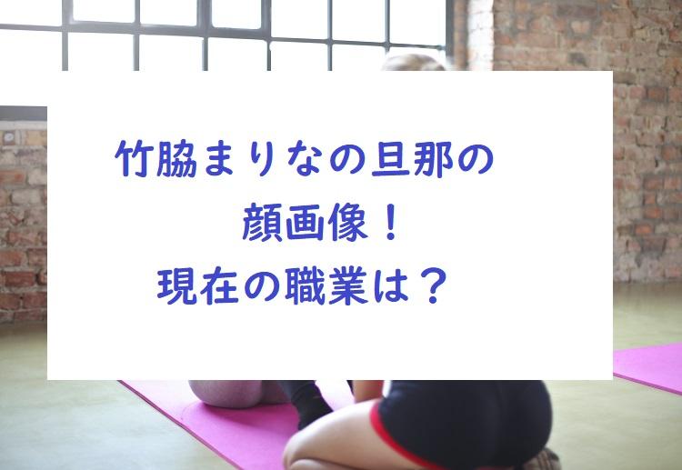 takewakimarina-danna-picture