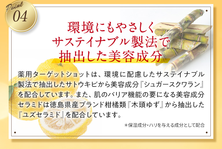 targetshot-kuchikomi-seibun4