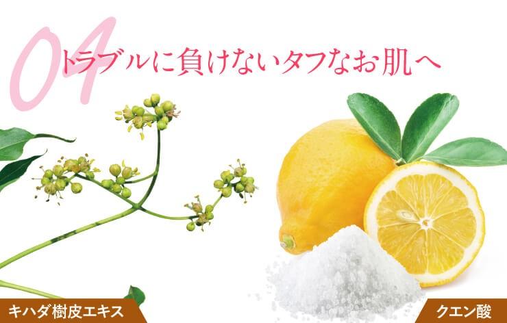 apinanature-kuchikomi10