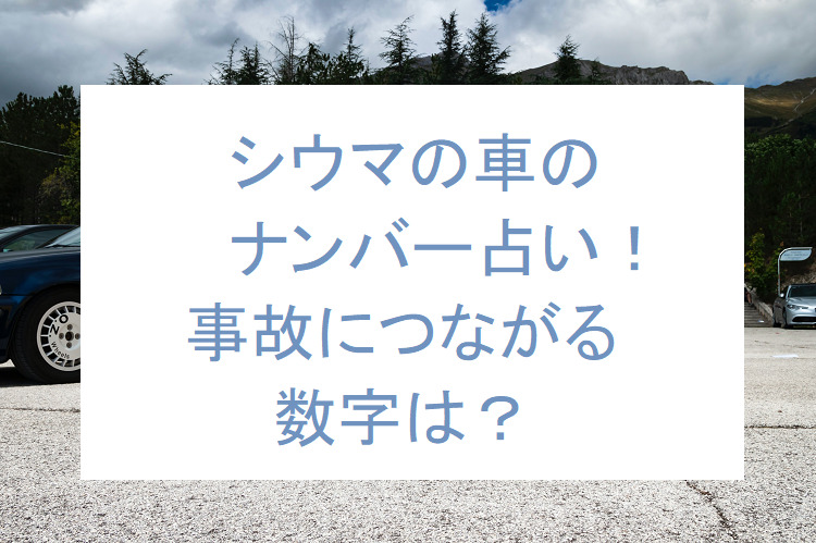 shiuma-car-number