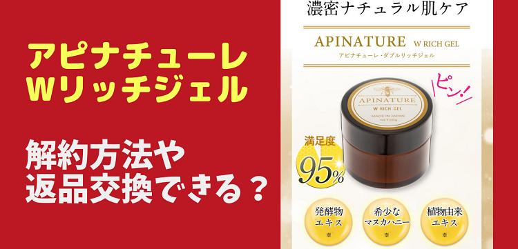 apinachure-kaiyakutop1