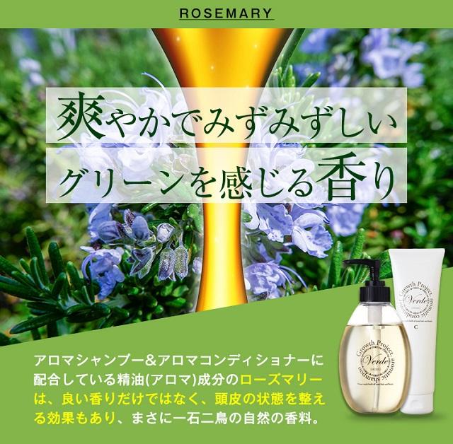 verde-kuchikomi6