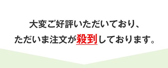 verde-kuchikomi7