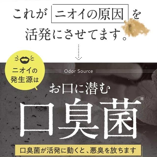 nosh-kuchikomi10